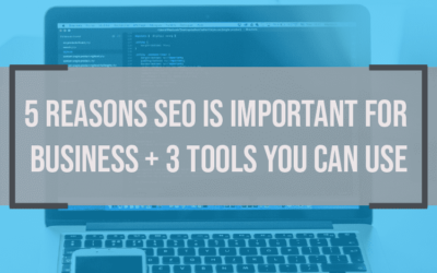 5 Reasons SEO Is Important for Business and 3 Tools You Can Use Now